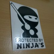 JDM Style Sticker protected by ninja